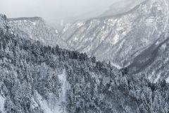 Aerial view of the winter Royalty Free Stock Photos