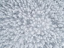 Aerial view of a winter snow-covered pine forest. Winter forest texture. Aerial view. Aerial drone view of a winter landscape. Sno. W covered forest. Aerial stock image