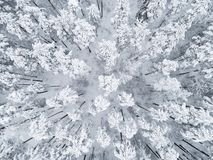 Aerial view of a winter snow-covered pine forest. Winter forest texture. Aerial view. Aerial drone view of a winter landscape. Sno. W covered forest. Aerial royalty free stock images