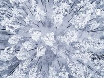 Aerial view of a winter snow-covered pine forest. Winter forest texture. Aerial view. Aerial drone view of a winter landscape. Sno. W covered forest. Aerial stock photos