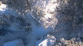Aerial view winter snowscape with forest, trees and snowy cliffs. Blue sky. Winter landscape. Siberia stock video footage