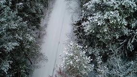 Aerial view of winter snowy forest. Aerial view of beautiful and snowy winter forest stock footage
