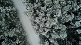 Aerial view of winter snowy forest stock video footage