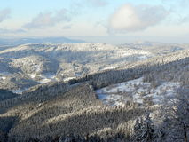 Aerial view of Wintry forest. Aerial view of forest in Winter, Orava, Slovakia royalty free stock images