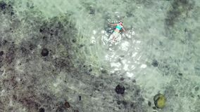 Aerial view of woman floating in amazing clear waters on tropical island. Beautiful sunshine reflected in the sea. Aerial view of woman floating in amazing clear stock footage