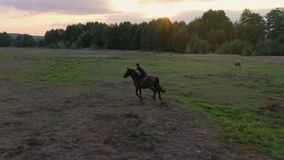 Aerial view of woman riding horse by gallop through a meadow at sunset. Horseback riding in slow motion.