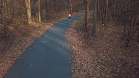 Aerial view of the woman running through an autumn forest at sunset stock footage