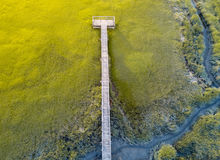 Aerial view of wooden bridge over a swamp. Aerial view of a wooden bridge over a swamp Royalty Free Stock Photos
