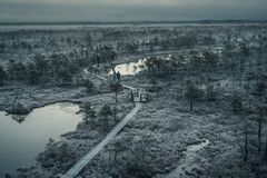Aerial view of wooden path in swamp on early winter foggy morning. With trees and grass covered in frost. Kemeri national park sunrise, Latvia. People walking Royalty Free Stock Photos
