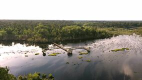 An aerial view of a wooden pathway on the water above the tropical jungle