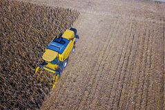 Aerial view of yellow blue combine harvesting on corn field. Aerial view of yellow blue harvester harvesting on corn field Royalty Free Stock Photo