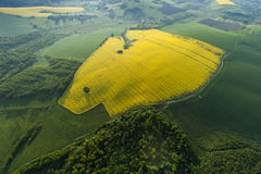 Aerial view of yellow fields Stock Photos