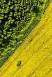 Aerial view of yellow harvest fields Royalty Free Stock Image