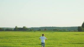 Boy walking in field stock footage