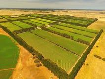Aerial of vineyard in Coonawarra region Royalty Free Stock Image