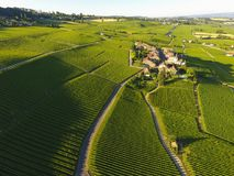 Aerial of Vineyard fields between Lausanne and Geneva, Switzer. Aerial of Vineyard fields between Lausanne and Geneva in Switzerland royalty free stock photos