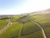 Aerial of Vineyard fields between Lausanne and Geneva, Switzer. Aerial of Vineyard fields between Lausanne and Geneva in Switzerland stock photo