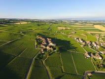 Aerial of Vineyard fields between Lausanne and Geneva, Switzer. Aerial of Vineyard fields between Lausanne and Geneva in Switzerland stock images