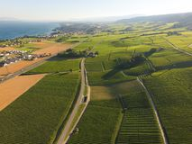 Aerial of Vineyard fields between Lausanne and Geneva, Switzer. Aerial of Vineyard fields between Lausanne and Geneva in Switzerland royalty free stock photography