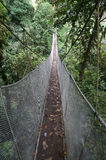 Aerial Walkway in Costa Rica Stock Image