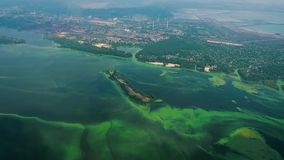 Aerial of wide river polluted with green algae near industry zone. Ecology, pollution and environmental problems stock footage