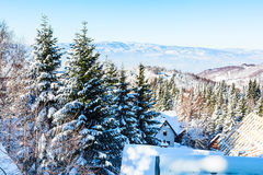Aerial winter mountain panorama, snow trees, blue sky. Aerial winter mountain panorama landscape with snowy pine trees, blue sky Royalty Free Stock Image