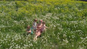 Aerial: Young blonde hippie mother having quality time sitting with her baby girls at a park dandelion field - Daughters. Aerial: Young blonde hippie mother stock video footage