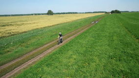 AERIAL: Young man cycling on bicycle at rural road through green and yellow field. stock footage