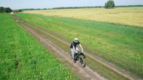 AERIAL: Young man cycling on bicycle at rural road through green and yellow field. stock video footage
