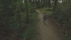 Aerial of a young woman walking through a forest, low altitude tracking shot forward following. Medium shot stock video footage