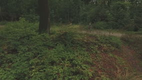 Aerial of a young woman walking through a forest, low altitude tracking shot from left to right. With coppice in front and woman in background stock footage