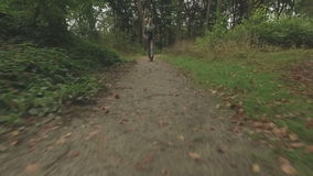 Aerial of a young woman walking through a forest, very low altitude tracking shot backwards. In front of the woman, medium shot stock video footage