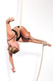 Aerialist Stock Photos