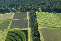 Aerials of Lewa Conservancy showing fence line of protected areas and encroaching farming in Kenya, Africa Stock Photo