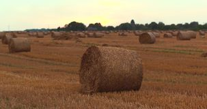 Aerilal skottfält med Straw Bales Under Sunset Sky UltraHD stock video