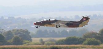 Aero- L-29 DelfÃn - camuflaje Imagen de archivo