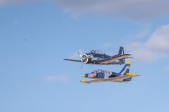 Aero- troyano de L-39 Albatros y de T 28 Imágenes de archivo libres de regalías