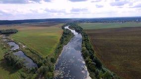 Aero videoopname De zomer, in de middag, het rivierlandschap Rond zijn er de bomen, de gebieden en de weiden stock video