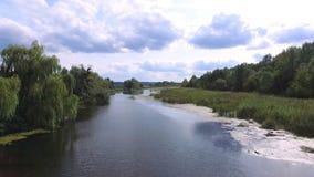 Aero videoopname De zomer, in de middag, het rivierlandschap rond zijn er de bomen, riet Mooi Blauw stock videobeelden