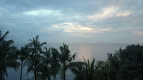 Aero view from drone of dawn of sun over sea through palm trees on beach, Bali, Indonesia.  stock footage