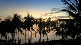 Aerial view from drone on sea, seashore , palm trees on beach , Bali, Indonesia during sunrise stock video