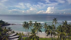 Aero view from drone on sea, seashore , palm trees on beach , Bali, Indonesia stock video