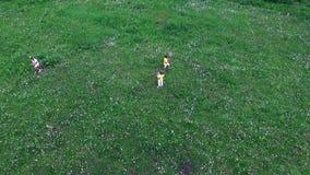 Aero, wideo strzelanina od above, Dzieci wraz z ich matkami bawić się z piłką na chamomile łące zdjęcie wideo