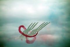 aerobatic команда красного цвета raf стрелок Стоковые Изображения RF