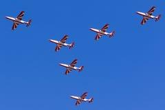 Aerobatic Teamankunft der polnischen Luftwaffe Stockfotos