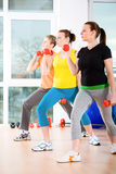 Aerobics. Young women exercising in a step aerobics class stock photo