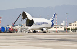 Aerobus Bieługa A300-600ST Zdjęcia Royalty Free