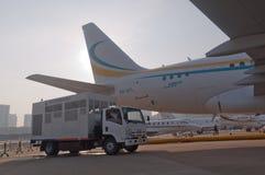 Aerobus 318 elita biznesu strumień Obraz Royalty Free