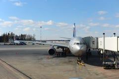 Aeroflot-Flugzeuge angekoppelt in Sheremetyevo-Flughafen Stockfoto