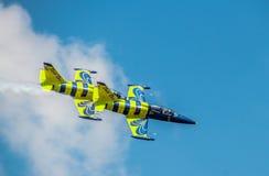 Aeroplano báltico de la abeja Fotos de archivo libres de regalías